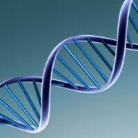 Comment l'ADN peut maintenant stocker toutes les données dans le monde.